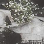 El cliché de la eterna primavera