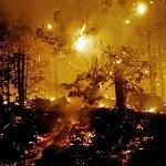 Auxilio: Petén se está quemando