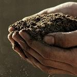 La importancia del Desarrollo Sostenible