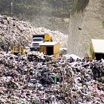 La vida en el basurero