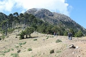 Vista hacia la montaña