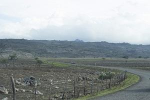 Sequía en carretera